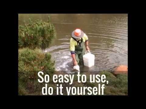 Got a Leaking Dam / Pond? Fix it now!