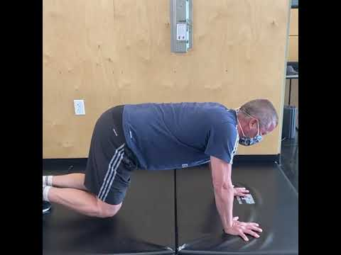 Great Bodyweight Exercise - The Bird Dog with Beast Variation