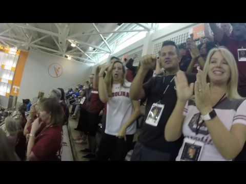 SEC Swimming Championships 2017