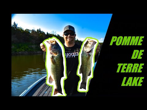 Fishing POMME DE TERRE LAKE In Missouri