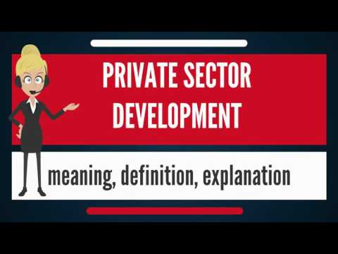 What is PRIVATE SECTOR DEVELOPMENT? What does PRIVATE SECTOR DEVELOPMENT mean?