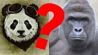 Pandas. Gorillas, and Fossils!