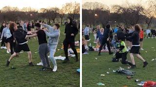 video: Watch: Large brawl in Edinburgh park leaves police officer injured