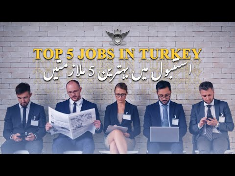Top 5 job in Turkey   The Fortune Group Of Companies    ADIL SAMI   Istanbul   Turkey
