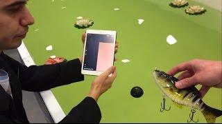 Deeper: Як ехолот Deeper показує рибу? Тест в басейні