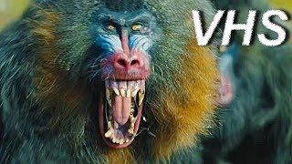 Джуманджи: Новый уровень - Трейлер на русском - VHSник