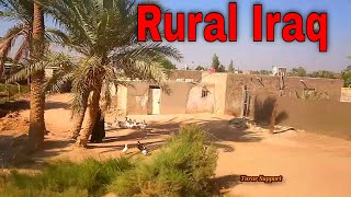 Traveling Iraq Rural Area Near Najaf City Middle East 2020