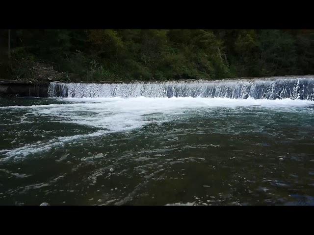 Природні цінності національного природного парку