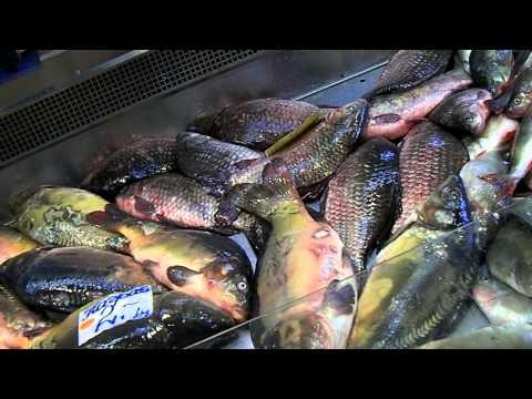 Riga Fish Market 1