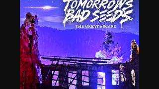 tomorrows bad seeds shape of things the great escape new album 2012