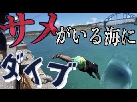 【2話】GT釣れても釣れなくても帰ります!in石垣島