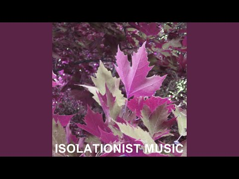 Isolationist Music