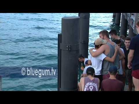 Shark attack victim Daniel Smith - memorial - Port Douglas