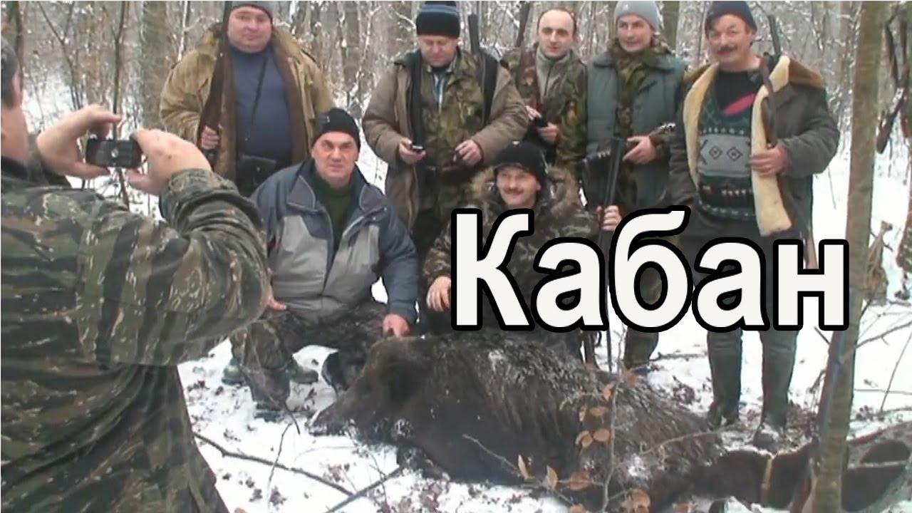 Охота на кабана в Закарпатской области|Hunting for wild boar in Ukraine
