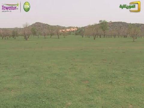 الخريف...الهيئة الوطنية للأرصاد تبشر بتساقطات مطرية | قناة الموريتانية