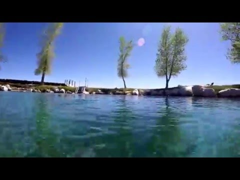 Big Warm Springs In Duckwater NV