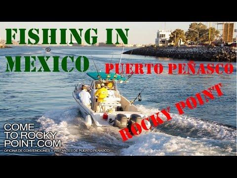 Fishing In Puerto Peñasco Mexico