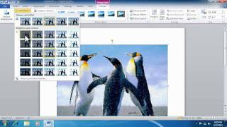 Office 2010 - Improved Picture Editing Tools