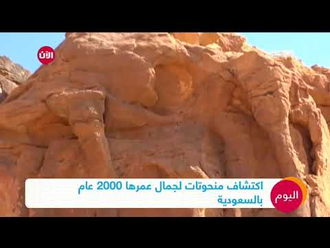 اكتشاف منحوتات لجمال عمرها 2000 عام في السعودية  - نشر قبل 3 ساعة