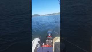 видео Рыбалка на реке Бия