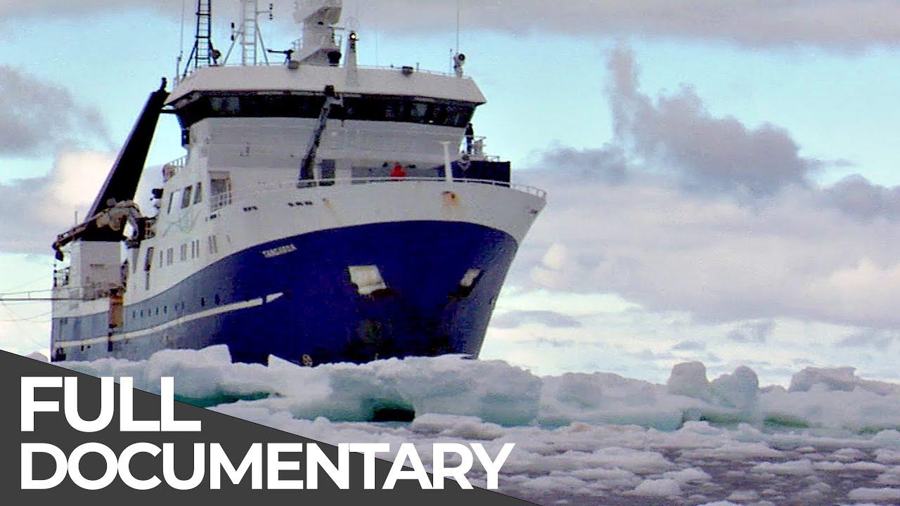 Expedition Antarctica | Free Documentary