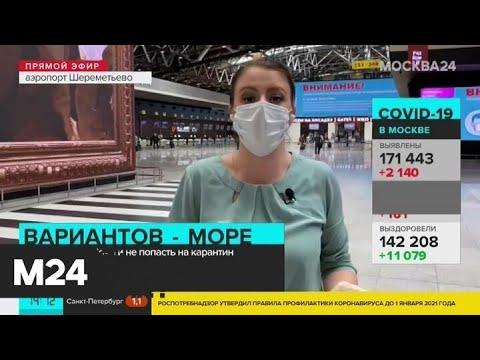 Пассажиры в Шереметьево рассказали, куда летят - Москва 24