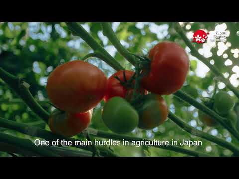 Innovation Japan: Technology transforms Japan's agriculture