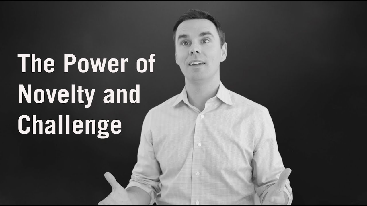 The Power of Novelty and Challenge