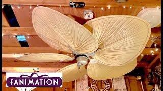 """Fanimation """"Islander"""" Ceiling Fan"""