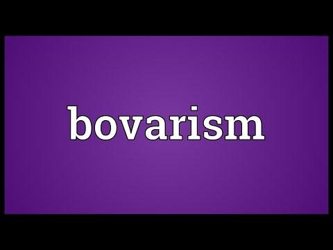 Header of bovarism
