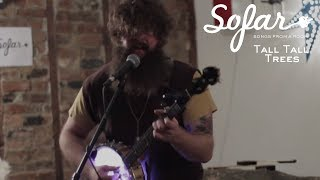 Tall Tall Trees - Highwire | Sofar NYC