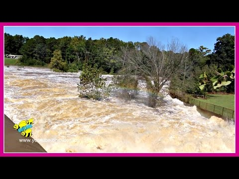 🌀 HURRICANE MATTHEW AFTERMATH FOOTAGE 🌀 ~ NORTH CAROLINA ROCKY MOUNT