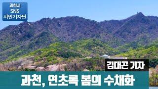 과천, 연초록 봄의 수채화 ㅣBy 김대곤 기자