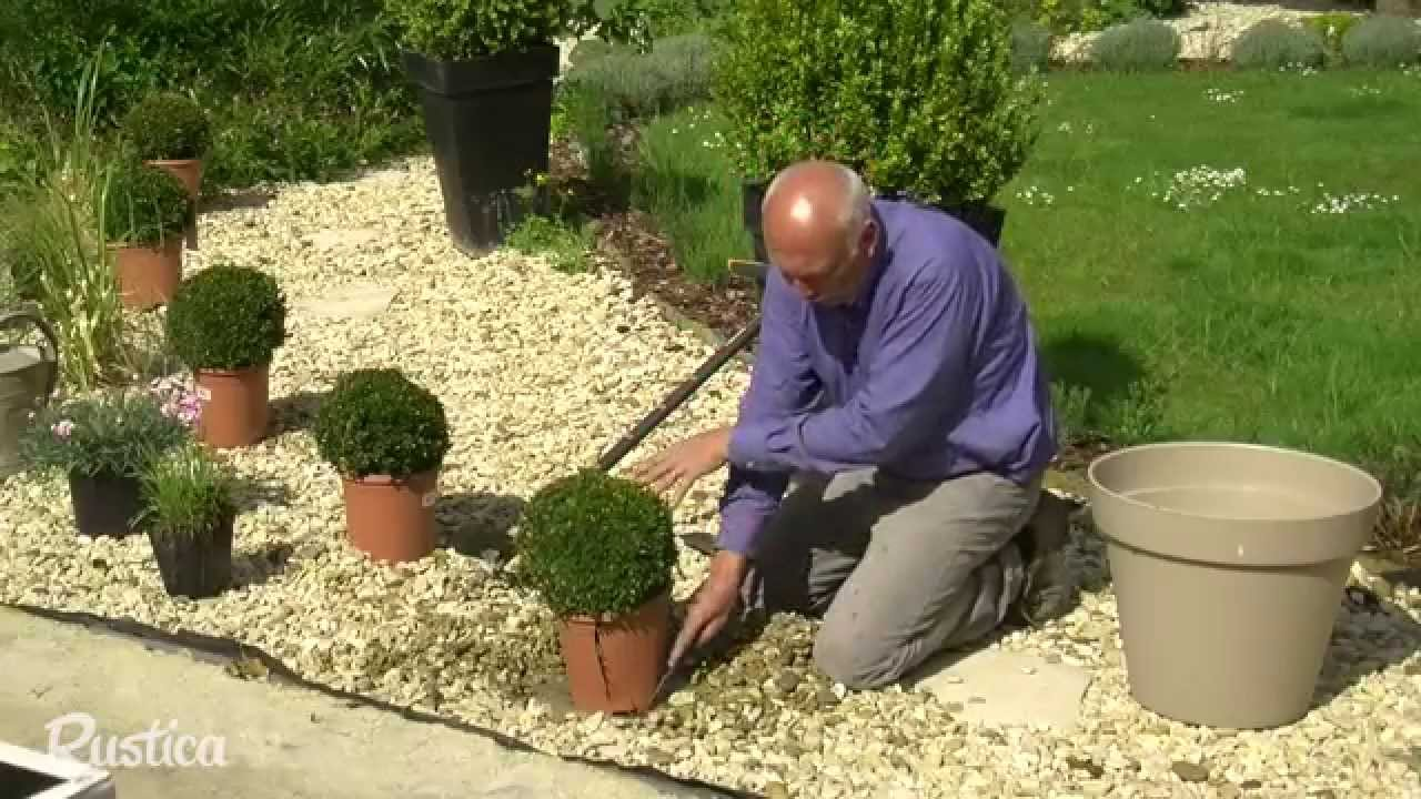Habiller un gravier avec des plantes youtube for Decoration jardin palmier