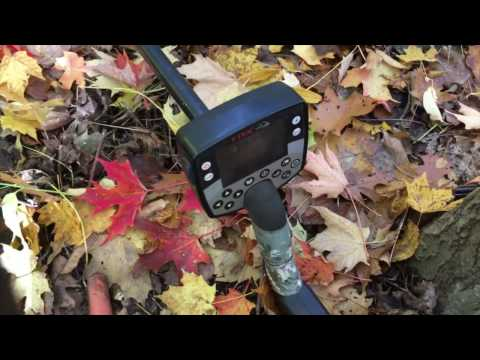 Metal detecting camp sites deep in the woods!  Live dig