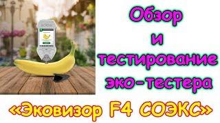 Обзор эко-тестера 'Эковизор F4 СОЭКС'. (10.18г.) Семья Бровченко.