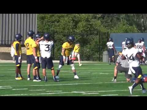 BlueGoldNews.com: Will Grier Quick Throw Session - 7/30/17