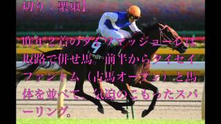 競馬【マイルCS】ダイワマッジョーレ「落ち着きも出てきた」