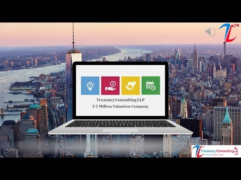 ACI Trainings Certification - Treasury Consulting LLP