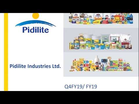 Pidilite Industries Ltd Investor Presentation For March 2019 Results Youtube