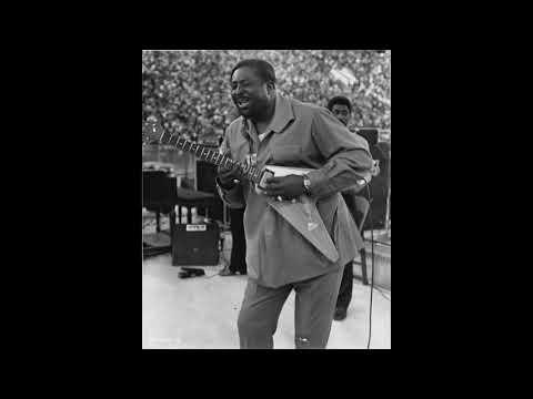 Albert King - Grant Park - Chicago Blues Festival - 6/11/68 SBD - Full Concert Mp3