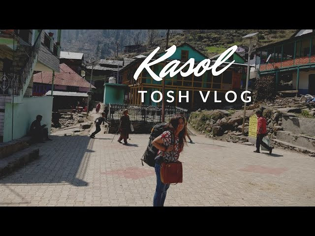 Road trip to Kasol with friends part 2: A visit to Tosh