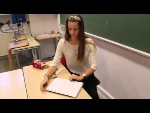 Projektopgave - Roller, personlighed og identitet