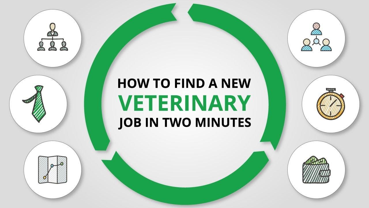 Veterinary Jobs From Prospect Health