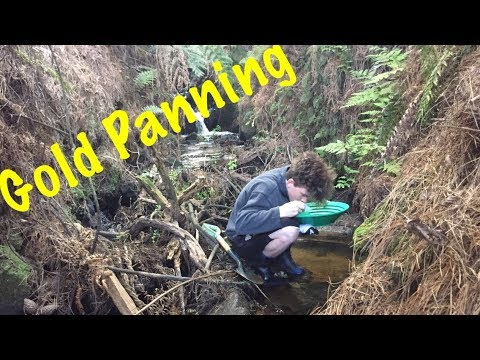 Panning For Gold In New Zealand's North Island