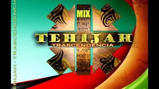 Tehijah mix 2013 -Disco Trascendencia part 1-Dishelo