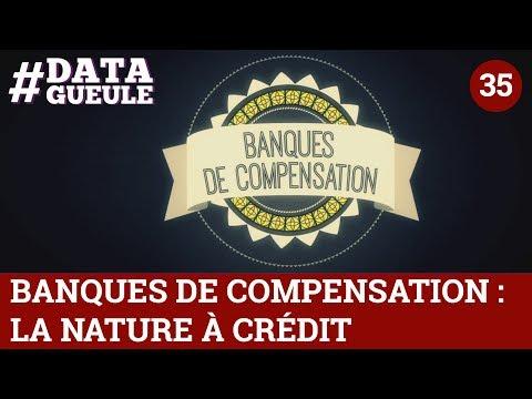 Banques de compensation : la Nature à crédit - #DATAGUEULE 35