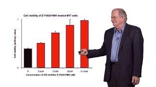 Gregory Petsko (Cornell) 2: Neurodegenerative disease: Parkinson's disease: How might it be stopped