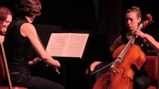 Black Orchid String Trio - 2014 Columbus Invitational
