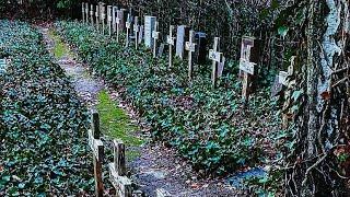 Cemetery for the nameless